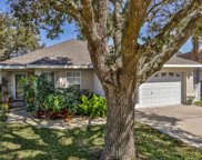 411 Bushnell Park Court, Ormond Beach image