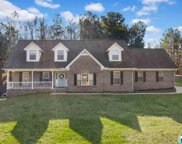 3736 Tidwell Hollow Rd, Oneonta image