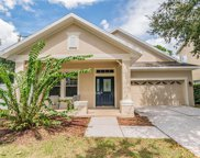 6415 Sea Lavender Lane, Tampa image