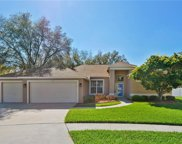 4813 Water Lark Way, Valrico image