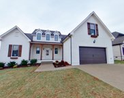 8048 Brightwater Way, Spring Hill image