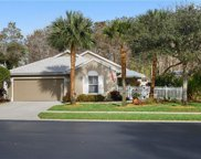 1249 Silverstrand Dr, Naples image
