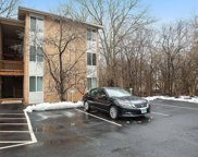 5809 Oakwood Drive Unit #B, Lisle image