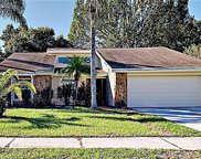 12115 Fruitwood Drive, Riverview image
