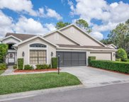 9210 Green Pines Terrace, New Port Richey image