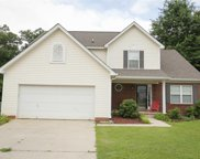 113 Tail Feather Way, Chapin image