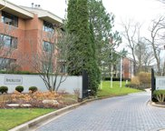 3525 S Cass Court Unit #4TS, Oak Brook image