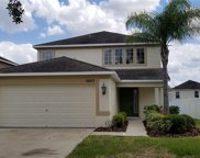 10617 Shady Preserve Drive, Riverview image