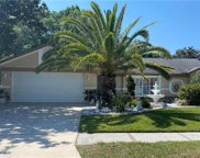 12211 Wildbrook Drive, Riverview image