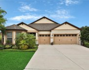 30109 Hackney Loop, Mount Dora image