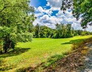 Daresa Lane, Knoxville image