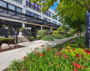 1070 West 15Th Street Unit 308, Chicago image