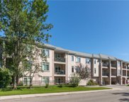 910 70 Avenue Southwest Unit 312, Calgary image