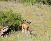 22066 Amethyst Road, Deer Trail image