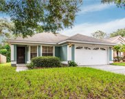 1594 Royal Oaks Drive, Apopka image