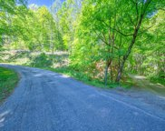 Hutchinson Road, Sylva image