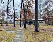 947 County Road 595, Cedar Bluff image