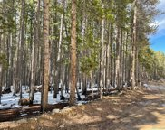00 Elk Trail, Evergreen image