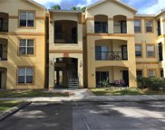 5602 Pinnacle Heights Circle Unit 303, Tampa image