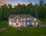 132 Bunker Hill  Road, Andover image
