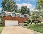9420 Twin Spruce  Drive, St Louis image