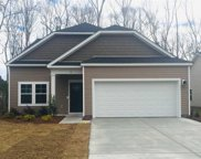 41 Costa Ct., Pawleys Island image