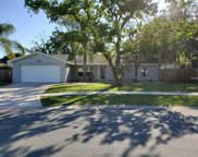 3844 Highgate Drive, Valrico image
