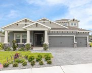 4119 Natural Vista Court, New Port Richey image
