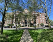 470 West Mahogany Court Unit 612, Palatine image
