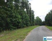 Mountain Springs Est Unit Lot, Odenville image
