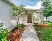 11819 Lark Song Loop, Riverview image