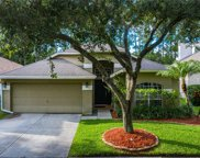 11833 Derbyshire Drive, Tampa image
