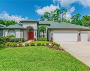 10524 Greencrest Drive, Tampa image