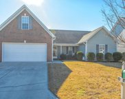 5032 Trumpet Vine Way, Wilmington image
