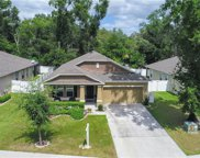 1405 Independence Lane, Mount Dora image
