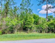 6220 Hibiscus Street, Bunnell image