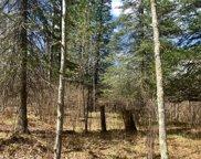 000 Bigfork Trail, Lawrence image