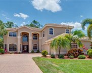 12446 Pebble Stone CT, Fort Myers image