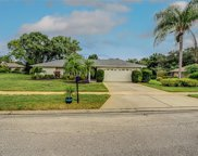 60 Woodcutter Court, Palm Harbor image