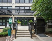 1110 West 15Th Street Unit 315, Chicago image