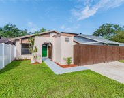 10310 Pennytree Place, Tampa image