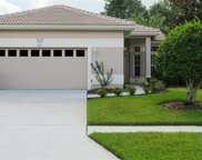 3941 Silk Oak Lane, Palm Harbor image