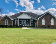 169 Lakeview Drive, Athens image