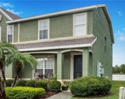 11626 Colony Lake Drive, Tampa image