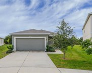 12125 Barnsley Reserve Place, Gibsonton image