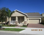 15055 Driftwater Drive, Winter Garden image