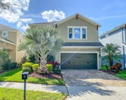 16303 Bayberry View Drive, Lithia image