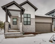7003 Homeplace Point, Castle Rock image