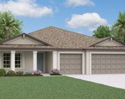 13581 Willow Bluestar Loop, Riverview image