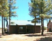 2725 High Pine Loop, Overgaard image